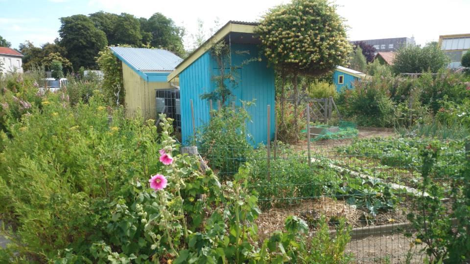 Cabanes de jardin familial